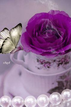 Роза в чашке - анимация на телефон №1280037