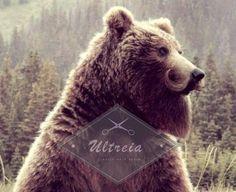 No seas oso y cuidate en Ultreiapeluqueria.