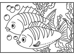 fish coloring pages 114 272658 high definition wallpapers wallalay