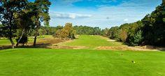 Blackmoor Golf Club, Hampshire, England