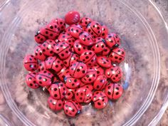 Lady bugs... made with red M's and edible food pen