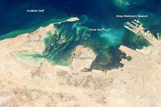 Tarut Bay, Saudi Arabia