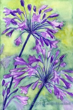 watercolor purple flowers | Agapanthus in purple - watercolor - print - flowers, bright, green ...