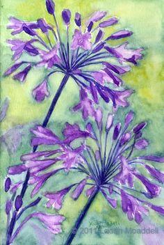 Agapanthus in purple - watercolor - print - flowers, bright, green, nature