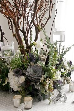 EXCEPT the brown branch behind it it is Perfect!!!!! Everything I love - the succulents, the Ulehe Fern - fiddle heads and white flowers...