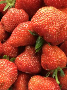 Spring Bucket List for Long Island Anything Is Possible, Fat To Fit, Strawberry, Veggies, Fruit, Spring, Food, Check, Inspiration