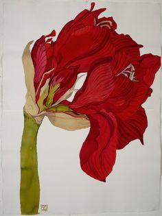 Amaryllis painting by Sarah Graham❣ Gravure Illustration, Illustration Art, Illustrations, Macro Flower, Flower Art, Botanical Drawings, Botanical Prints, Art Floral, Sarah Graham Artist