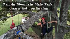 Panola Mountain State Park is the ideal place to climb a tree. I had the chance to relive those moments last month when I was visiting Henry County, Ga.