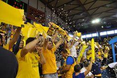 #Aficionados amarillos CID