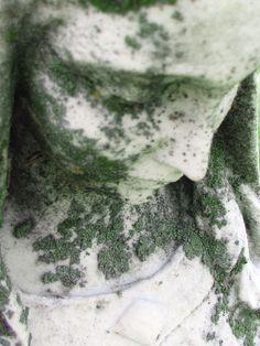 Moss Mother