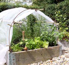 Tunnelbåge Stor by Växtkompaniet Garden Planning, Outdoor Gardens, Container Gardening, Diy Garden Bed, Allotment Gardening, Kitchen Garden, Plants, Edible Garden, Garden Inspiration