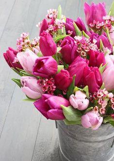 {Belles Fleurs}