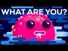 What Are You? So. Are you your body? And if so, how exactly does this work? Lets explore lots of confusing questions. By: Kurzgesagt – In…