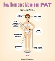 Hormones, minerals, and supplements and the role played in Health & weight(Hormone Reset Diet: Sata Gottfried M.D.)