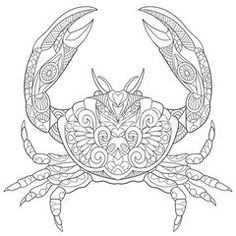 Zentangle stylized cartoon crab, isolated on white background. Sketch for adult antistress coloring page. Hand drawn doodle, zentangle, floral design elements for coloring book.