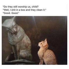 Funny Categories Fuunyy Feel free to peruse this gallery of fine art memes at your leisure. # funny memes # art memes # clssic art memes # history meme Source by cheezburgerpins Funny Animal Memes, Cute Funny Animals, Funny Animal Pictures, Cat Memes, Funny Cute, Cute Cats, Funny Photos, Super Funny, Meme Meme