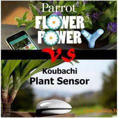 Flower Power  ou Koubachi ? Quel est votre préféré?   Comparaison entre 2 capteurs de plantes bien connu des #jardins connecté.  🌳🌳🌳   🤗 Likez 💖 partagez 🤗  🤗 Likez 💖 partagez 🤗    #objetsconnectés  #flowerpower #parrot # koubachi #innovation #jardin #CJ .