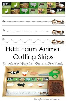 Free Montessori Printables Archives - Living Montessori Now Cutting Activities, Farm Activities, Gross Motor Activities, Animal Activities, Montessori Activities, Montessori Homeschool, Physical Activities, Homeschooling, Cognitive Activities