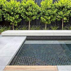 Hungry Wolf Studio Pty Ltd ( Concrete Pool, Poured Concrete, Polished Concrete, Pool Days, Cool Pools, Pool Designs, Landscape Design, Swimming Pools, Backyard