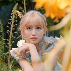 "Twice-Momo ""More & More"" Concept Film Kpop Girl Groups, Korean Girl Groups, Kpop Girls, Best Ways To Propose, Twice Korean, Jihyo Twice, Minatozaki Sana, Im Nayeon, K Pop Star"