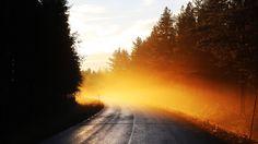 Mist Sunrise Morning 4k Wallpaper  #4k #Mist #Morning #Sunrise #Wallpaper