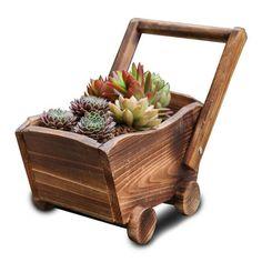 Flower Bed Plants, Flower Pots, Planting Flowers, Flowers Garden, Spring Flowers, Wooden Planters, Vintage Planters, Planter Pots, Wheelbarrow Planter