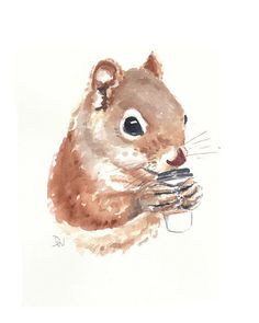 Squirrel Watercolor Painting Coffee Animal by...