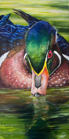 ideas color pencil Refined Presence Colorful duck painting inspired by the Wood Duck! Vibrant art that will look awesome in any Lake house! Wildlife Paintings, Wildlife Art, Animal Paintings, Animal Drawings, Art Drawings, Colored Pencil Drawings, Bird Paintings, Drawing Animals, Horse Drawings