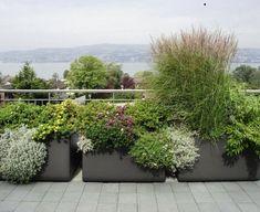 Große Pflanzkübel bieten Sichtschutz für den Balkon