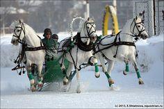 Russian troika, a three-horse sleigh.