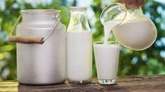 házi tej – Google Kereső