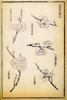 Chieh Tzu Yuan Manual of the Mustard Seed Garden 芥子园画传 single book - de en Inkston Japanese Ink Painting, Sumi E Painting, Japanese Drawings, Japanese Prints, Chinese Painting, Bd Art, Cherry Blossom Painting, Tinta China, Guache