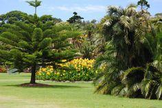 Royal Botanic Gardens, Sydney, Australia - My Own Balance
