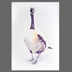 JEN BUCKLEY Original CANDADA GOOSE Signed Watercolour PAINTING signed large A3