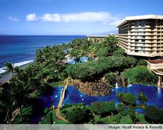 Hyatt Resort in Maui, Hawaii. One of the best hotels I've ever stayed at. Garden full of penguins and flamingos - no joke at all!