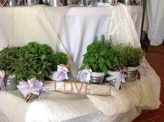 Salvia, rosmarino, menta with Love