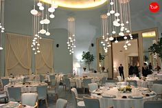 Luma chairs at the Turin Palace Hotel, Italy. Hospitality, Interior, Design, Furniture, Seating,