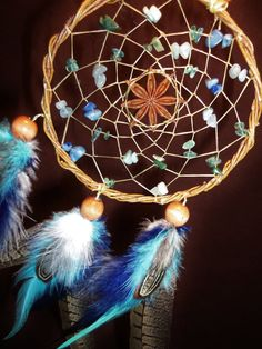 Dream Catcher- Seed of Creation- White Willow Dream Catcher with Star Anise and Pheasant Feathers- Made to Order