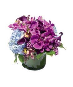 Grant Cornett  Orchid