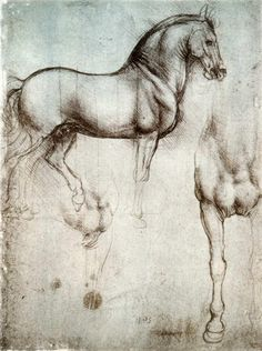 off Hand made oil painting reproduction of Study of horses, one of the most famous paintings by Leonardo Da Vinci. This study, from around was made by Leonardo da Vinci on silverpoint on prepared paper. The Duke of Milan, Ludo. Animal Drawings, Art Drawings, Horse Drawings, Art Du Croquis, Renaissance Kunst, Italian Renaissance, Horse Anatomy, Horse Wall Art, Horse Posters