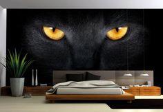 Fotomurali - FotomuraleOcchi di gatto