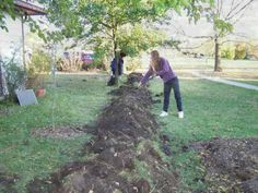 This is an example of very small scale water work.....Intro to Permaculture 14 - Bill and Becky's Permaculture Raingardens & Yard - YouTube