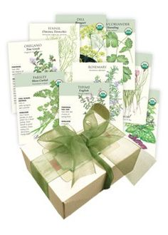 Chef's Herb Garden Seed Collection: No cook should be without these standard herbs!