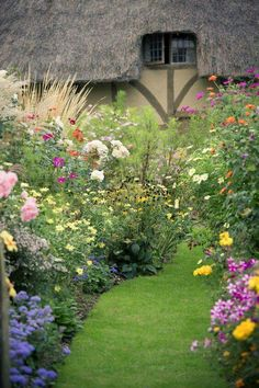 Carefree English Cottage Garden. Flowers look stunning in full bloom