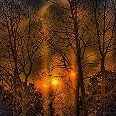Three suns in the quaking aspen #nationalpark #landscape #neveda #traveling #landscape_lovers #greatbasin #usinterior #californiacenterfordigitalarts #bobkillenarts #art #artteacher #travel #sunrise #photoshopteacher #adobe