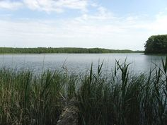 miedzyzdroje polsko - Hledat Googlem River, Outdoor, Outdoors, Outdoor Games, The Great Outdoors, Rivers