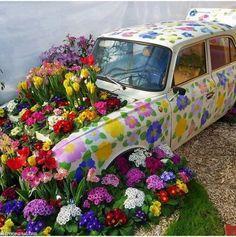 Original garden idea!