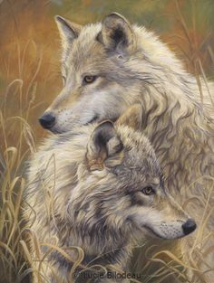 Together - wolf painting by Lucie Bilodeau