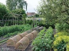Jardin anglais tunnels