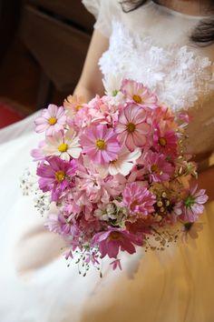 昨日の明日館のブーケの続きです。実は、花嫁様のヘッドドレスにはひとつのご希望がありました。コスモスとカスミソウという珍しい組み合わせは、そこからきています...